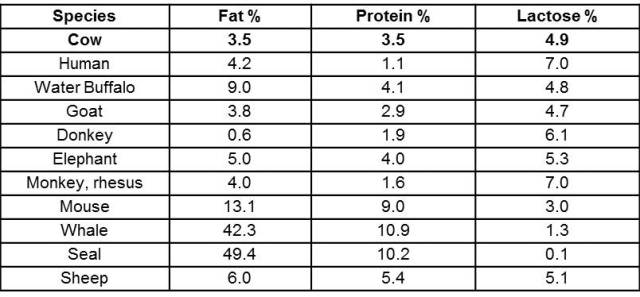 Comparison of Mammalian Milk Composition